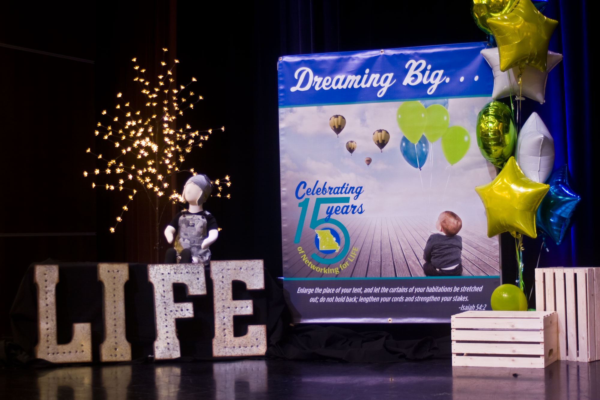 dreaming big with alliance for life